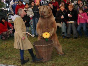 Medvědi Berounští